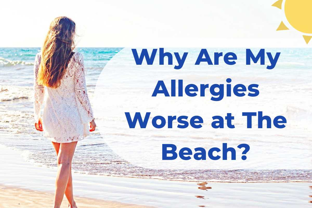 why are my allergies worse at the beach title page allergy preventions