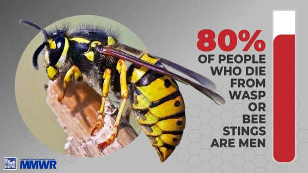allergy preventions presents MMWR image of wasp that states 80% of people who die from wasp or bee stings are men. Source QuickStats: Number of Deaths from Hornet, Wasp, and Bee Stings, Among Males and Females — National Vital Statistics System, United States, 2000–2017. MMWR Morb Mortal Wkly Rep 2019;68:649. DOI: http://dx.doi.org/10.15585/mmwr.mm6829a5