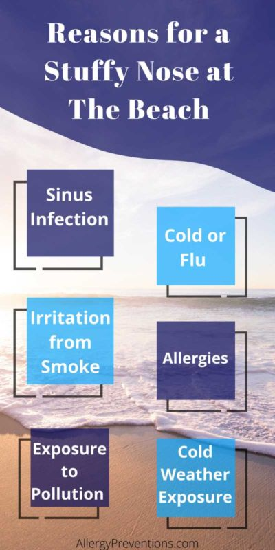 Reasons for a stuffy nose at the beach infographic. Sinus infection, cold or flu, irritation from smoke, allergies, cold weather exposure, exposure to pollution