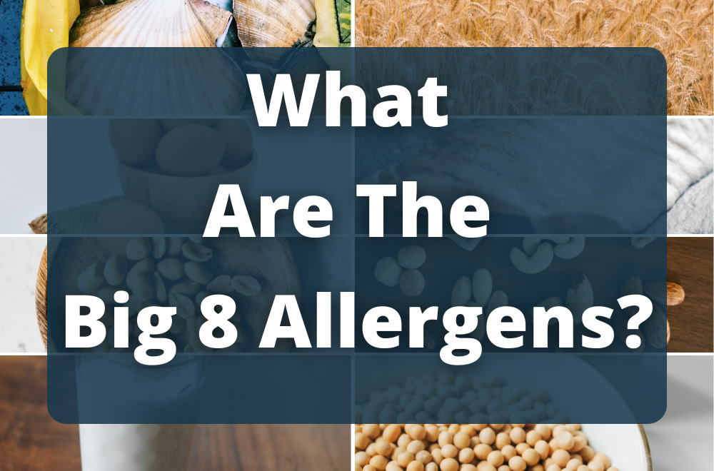 What-Are-The-Big 8-Allergens-blog